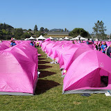 A sea of pink at the Wellness Village