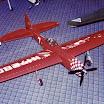 1995 Concours Bill Werwage-P-47.jpg