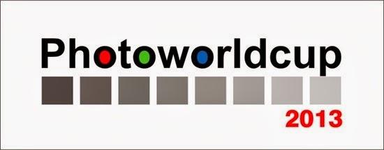 PWC 2013 Logo