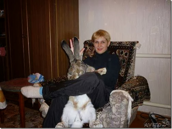 crazy-russian-people-036