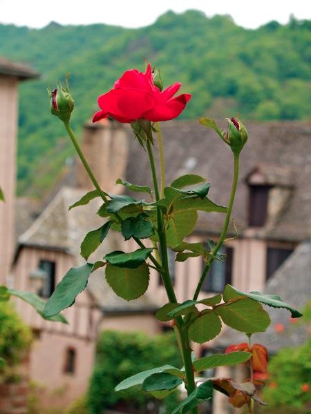 2011 07 28 Voyage France