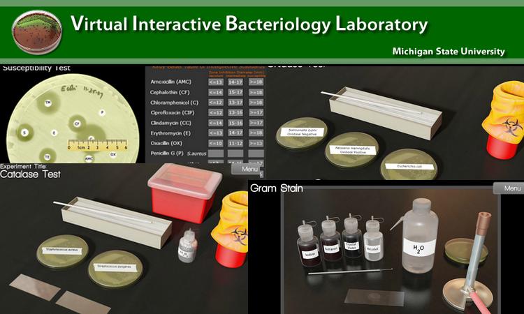 Laboratório Virtual Interativo de Bacteriologia