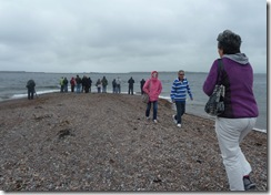 fortrose chanonry point