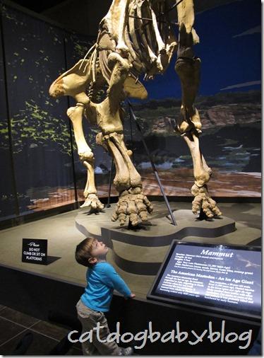 2013-03-29 Tellus Museum (22)