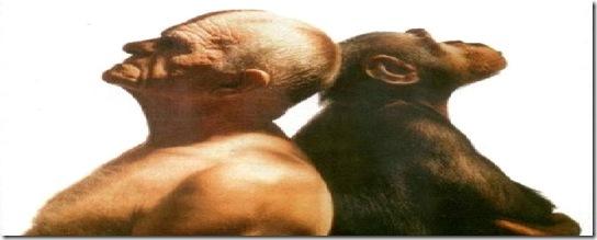 aristotele-uomo-animale-politico-filosofia