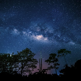 The milkyway by Christianto Mogolid - Landscapes Starscapes ( milkyway, photography, starscape, nightscape, borneo )