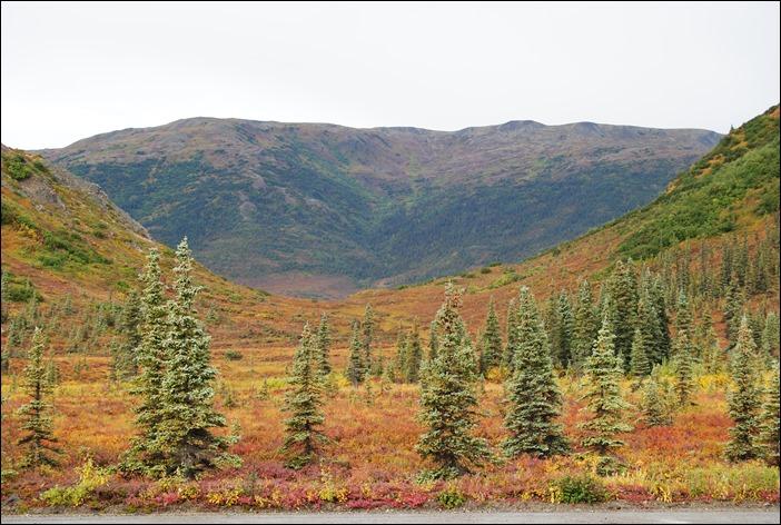 2013_08_Alaska 1082