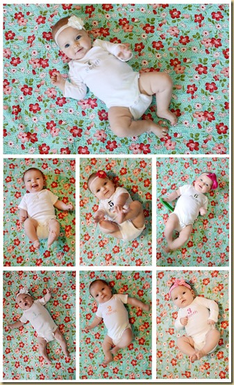 seven month collage