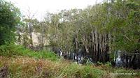 Creek hinter dem Campingplatz. Hauptsache der steigt nicht bis zum Zelt...