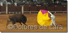 ©Dolores de Lara (106)