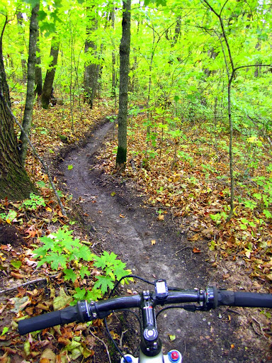 First section of trail buffed out nicely after blowing off leaves earlier in the day. Leaves are coming down fast and filling in track. After a few weeks we will blow out the track again.