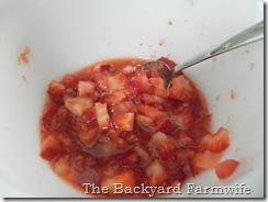 strawberry fro yo 01