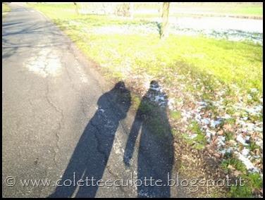 Passeggiata a Padulle - 29 gennaio 2014 (30)