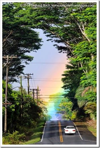 140726_Pahoa_rainbow