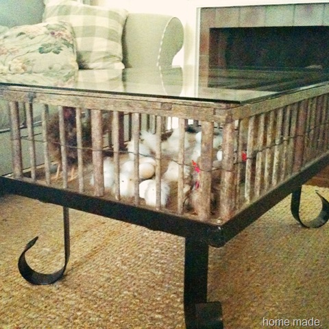 Chicken Coop Coffee Table_edited 1