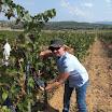 Excursión a conocer el vino del Somontano...