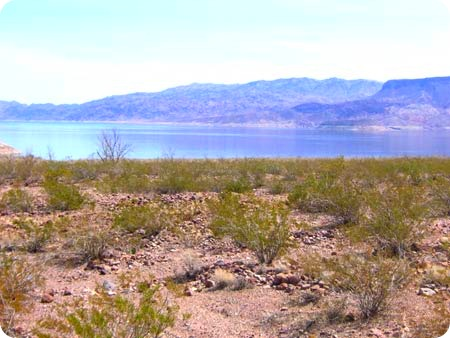 along-lake-mead