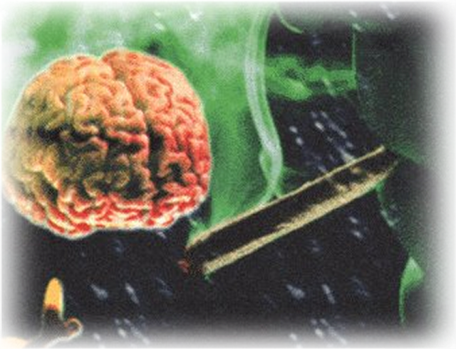 cerebro drogas