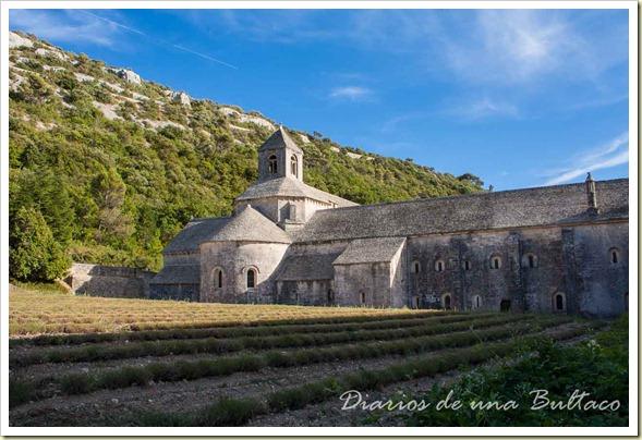 Abadia de Senanque-6