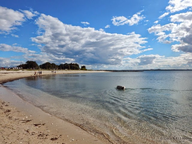 Munson at Silver Beach, Kurnell (1)