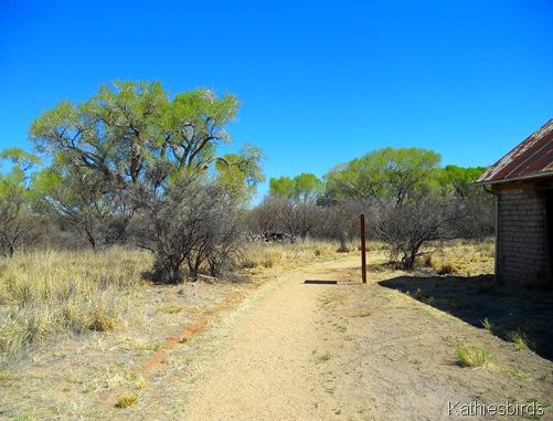 12. trail-kab
