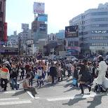 Sunday shopping day in Harajuku in Harajuku, Tokyo, Japan