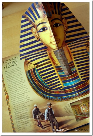 The Search for Tutankhamun by Niki Horin