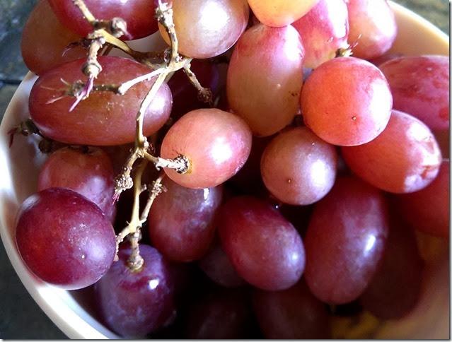 grapes-public-domain-pictures-1 (2227)