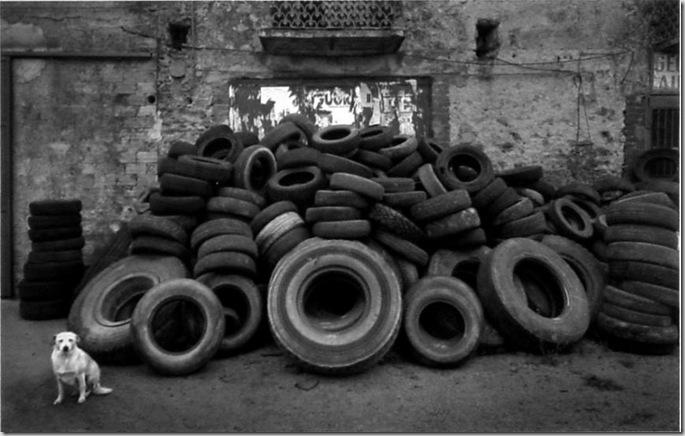 Cilento, 2000