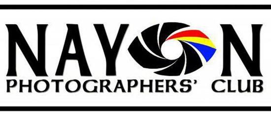 Nayon Logo