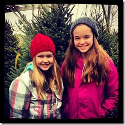 ChristmasTreeHunting2012