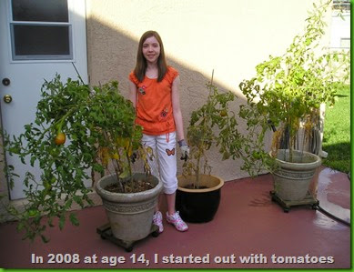"Elizabeth continues to get tomatoes from her ""late"" season tomato plants"