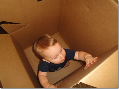 3.  Playing in the box