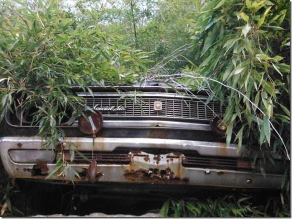 japan-graveyard-old-cars-36