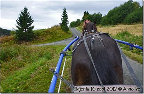2012-16sept-eldjenta_01