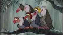 19 les vautours