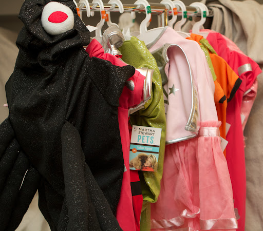 I hung those costumes on a clothing rack until we feel ready to try them on.