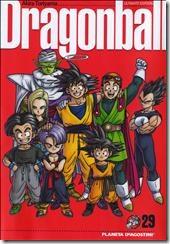 P00029 - Akira Toriyama - Dragon B