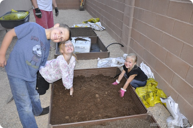 garden grow boxes