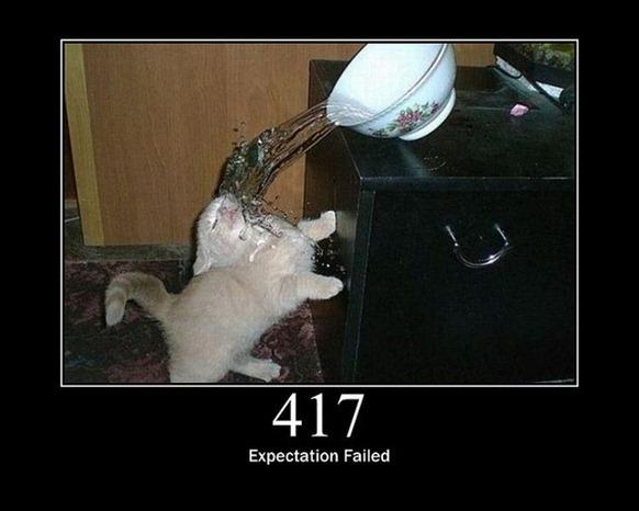 HTTP-Status-Cats-16