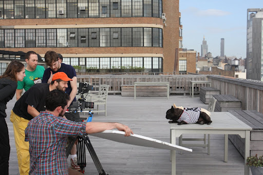 On day two of shooting, we were taken up to the rooftop of Starrett.  Everybody looks so serious.