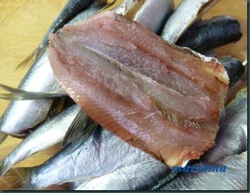sardinas rebozadas4 copia