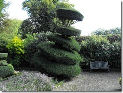 levens hall topiary 13