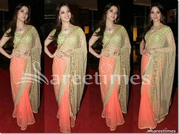 Tamanna_Half_and_Half_Saree