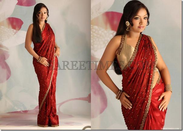 Vaishali_Maroon_Embroidery_Saree