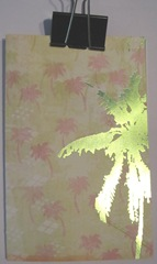 pamphlet book 3 hole lime palm tree cover