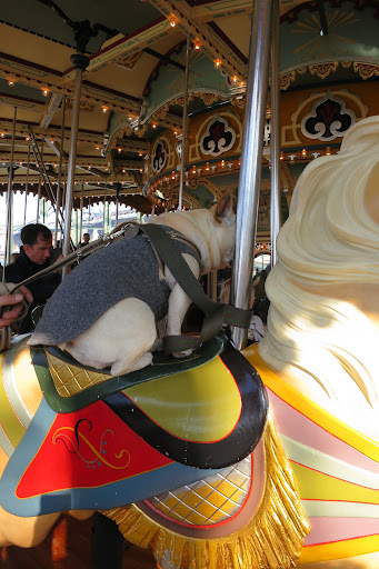 Whoa!  Riding this horse going up and down is a bit hair-raising!