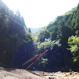 架線を利用した伐採の現場を見学 / Visited a logging site using cableway to collect logged trees.