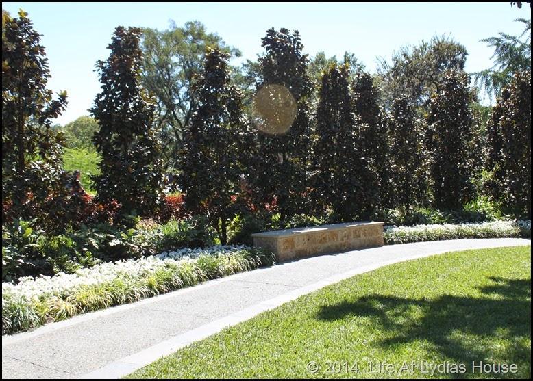 Dallas Arboretum - pumpkin festival-white garden 2