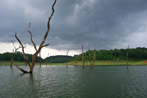 Lake Periyar, India 01